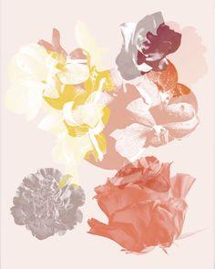 Mauren Brodbeck Loyalland, Untitled various sizes, inkjet on acrylic, edition of 3 + ap Art Et Illustration, Illustrations, Mood, Filmmaking, Contemporary Art, Flowers, Magazine, Eyes, Landscape
