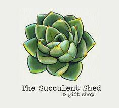 Succulent shed logo