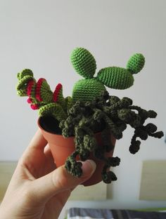 Cause of the fact that I'm a hopeless plant slayer, I decided to create a new, indestructible species My first version is in fact not a cactus, more likely some succulents. Unfortunately, there doe...