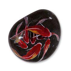 Goldfish drawn to stone, transformed into organic from inorganic I get water.