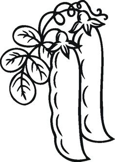 Fruits and Vegetables coloring sheets