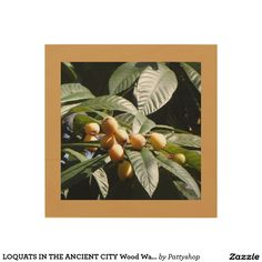 LOQUATS IN THE ANCIENT CITY Wood Wall Art