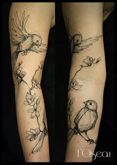 Skin Deep Tales-(LOVE the idea of a sketch tattoo-pen and ink feel)