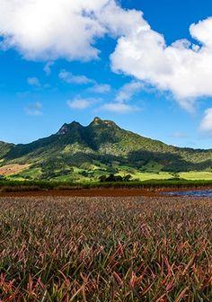 10 Reasons to Visit Mauritius.