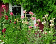 Design an English Country Garden - Top 10 Cottage Garden Plants and Flowers