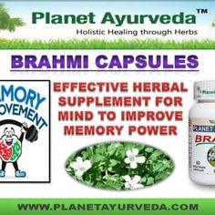  Brahmi is the small creeping herb withthe numerous branches. Brahmi works as a nerve tonic, digestiveaid and in promoting optimal brain function. It gro. http://slidehot.com/resources/easiest-way-to-improve-memory-naturally-brahmi-capsules.29255/