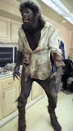 The Wolfman. Benecio del Toro emerges from Rick Baker's make-up chair! Werewolf Costume, Werewolf Art, Costume Halloween, Werewolf Makeup, Halloween Wings, Scary Movies, Horror Movies, The Wolfman 2010, Benecio Del Toro