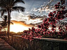 Wailea, Maui with Style
