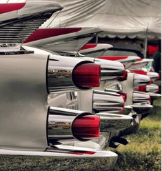 1959 Dodge(s)... this picture makes me so excited...