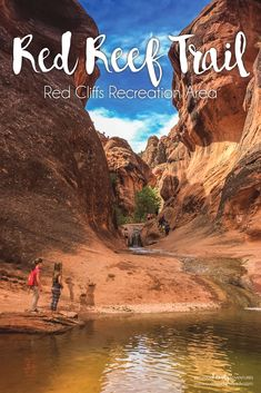 Less than a mile to a waterfall and tucked behind the Red Cliffs campground. This is a popular hike in southern Utah and a must visit when hiking with kids. via @outdoorfamilyad