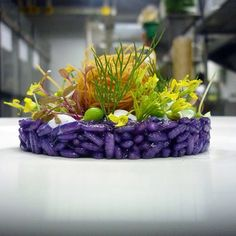 Butterfly pea Risotto...chiken wrapped noodles...foam by chef Wuttisak on IG #plating #gastronomy
