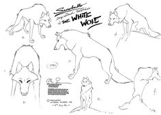 Living Lines Library: Balto (1995) - Characters, Model Sheets . The White Wolf