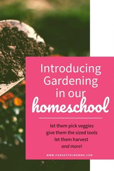 Introducing Gardening to Our Homeschool -#homeschoolscience #scienceactivities #scienceproject #gardeningwithkids