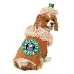 Posh Puppy Boutique is a shop for designer dog clothes and accessories -Iced Coffee Puppy Latte Starbarks Dog Costume puppy Costumes, pet toys, collars, luxurious carriers, treats, stunning bowls, diaper, belly bands, fancy id tags, harnesses, unique appa
