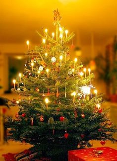 christmas off the grid your grandparents were right candles on your christmas tree really are awesome