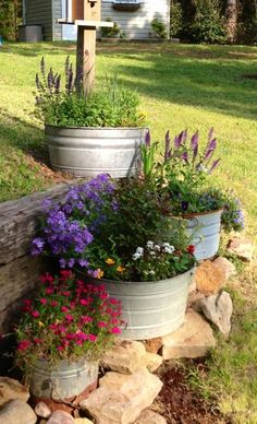 love these galvanized buckets for planters. More