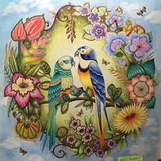 #johannabasford #magicaljungle #coloringforadults