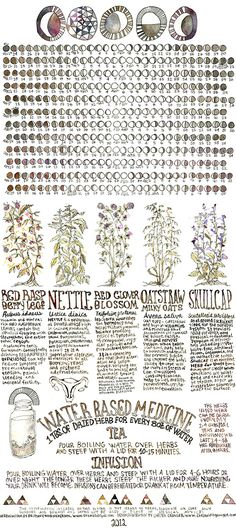 Herbalism Board - a great board that I follow and don't want to lose the link to