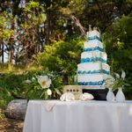 Beautiful Cake by Coastal Cake Company - Flowers by Purely Flower, image by Greg Howard Photography