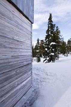 Materiality  -  Alpine Cabin / Scott & Scott Architects