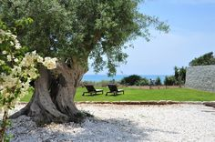 Marea - villa with direct access to a sandy beach in Sicily