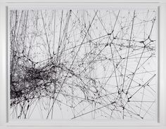 Tomás Saraceno, Focus on 14 Billions, 2010