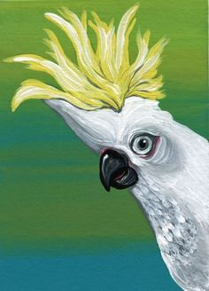 Buy ACEO ATC Original White Cockatoo Sulfer Crested Pet Bird Art-Carla Smale, Gouache painting by carla smale on Artfinder. Discover thousands of other original paintings, prints, sculptures and photography from independent artists.