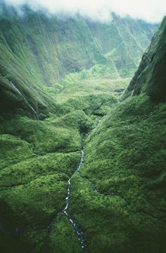 Wettest Spot In Hawaii: Mount Waialeale, Kauai. so i'll be right at home..?