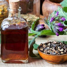 8 pravidel, jak pěstovat a využívat kostival lékařský (Symphytum officinale), zevní přírodní lék na klouby, modřiny či spáleniny. Recepty na mast a tinkturu.