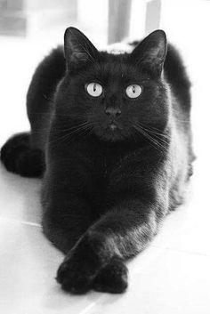 Black and beautiful!!