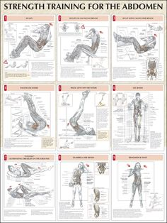 Resistance training offers similar benefits as aerobic exercise in lowering blood pressure