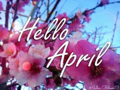 Have a nice april 2014 April Clipart, April Images, Being There For Someone Quotes, April Quotes, Photos Free, Bad Life, Message Quotes, Wishes Messages, Online Tutorials
