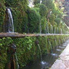 In de gigantische tuin van Villa d'Este in Tivoli zie je overal fonteinen en waterspuiters.