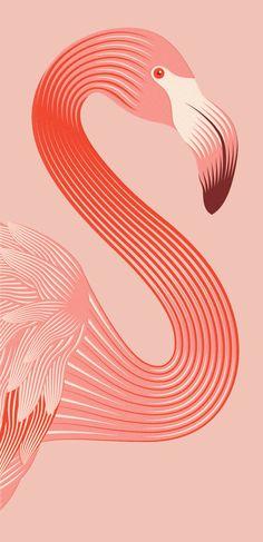 https://www.behance.net/gallery/24482831/Rose-Flamingo-Wine