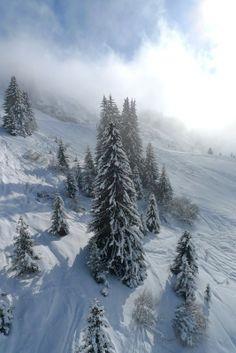 Eleonorik — «зима 2 (394).jpg» на Яндекс.Фотках