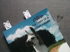 23 Things You Need If You& Obsessed With Llamas Office Organization At Work, Llama Gifts, Llama Alpaca, Book Of Life, Sticky Notes, Life Planner, Daddy, Pets, Animals