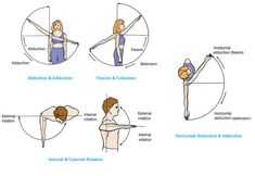 diagrams and terms for the various motions that can occur around the glenohumeral joint