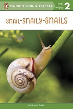 Cover image for Snail-snaily-snails