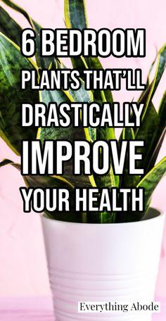Inside Plants, Cool Plants, Garden Plants, House Plants, Garden Weeds, Health And Wellness, Health And Beauty, Health Tips, Best Plants For Bedroom