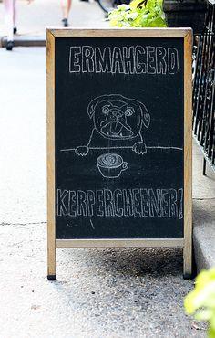 Ermahgerd: cappucino  -- Ermahgerd by kiwirabbitfrufru, via Flickr