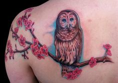 Cherry Blossom Half Sleeve Tattoo | ... Tattoos : Tattoos : Marc Durrant : Owl perched on cherry blossom