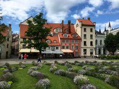 Reisetipps Riga: Blick auf die Altstadt