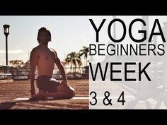 Yoga For Beginners Week 3 & 4 - Tim Senesi - YouTube