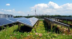 Solar powered & energy-saving green roof // ZinCo
