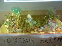 Νηπιαγωγός από τα πέντε...: ΑΠΟ ΣΠΟΡΑΚΙ-ΘΑΜΝΟΣ First Fathers Day Gifts, Diy And Crafts, Kindergarten, Preschool, Autumn, Farmer, Blog, Seeds, Bread