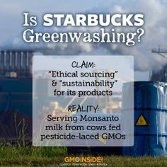 Starbucks is one of the largest users of dairy in the world. Tell Starbucks to serve only organic milk! 1. Sign our petition: http://gmoinside.org/starbucks  2. Post on their Facebook page: www.facebook.com/starbucks  Learn more about the long term commitment GMO Inside is asking of Starbucks here: http://gmoinside.org/long-term-commitment-needed-starbucks  #GMODairy #StopMonsanto