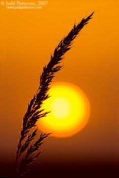 Pottawatomie County, Kansas - THE SUN & its core.