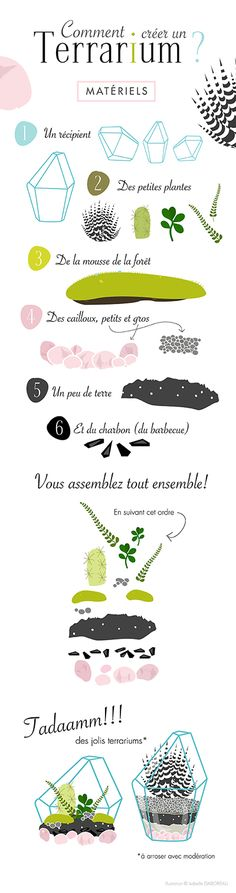 Perennial Flower Gardening - 5 Methods For A Great Backyard Crer Son Terrarium Illustration Isabelle Gaborieau Plus Terrarium Diy, Mini Cactus, Cactus Flower, Succulent Gardening, Flower Gardening, Succulents In Containers, Deco Floral, Tips & Tricks, Illustration