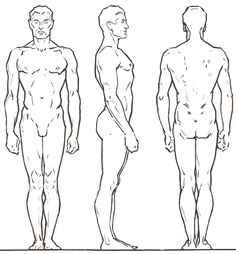 male body drawing template - Google Search