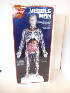 "SKILCRAFT Model Anatomy Kit VISIBLE MAN 16"" tall factory sealed #74622 #Skilcraft"